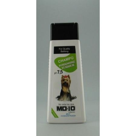 MD10 yorkshire terrier