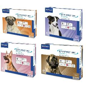 Pipetas para perros Effipro Duo antiparásitos