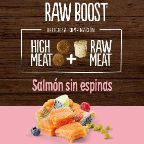 True Instinct Raw Boost Adult Salmón